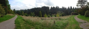 Pinetum Panorama